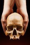 изображение черноты предпосылки 3d людское представило череп Влияние пирофакела Стоковая Фотография