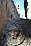 Изображение льва Стоковые Фото