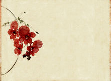изображение элементов предпосылки флористическое Стоковые Фото