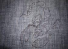 Изображение scorpio Стоковые Фотографии RF