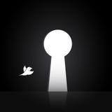 Изображения вектора птиц которые летают вне дверь Стоковые Фотографии RF