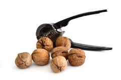 Изображения грецкого ореха и грецкого ореха ломая инструмент Стоковое Изображение RF