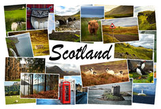 Изображения коллажа Шотландии Стоковое фото RF