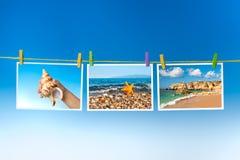 Изображения моря и тварей моря вися на красочных колышках Стоковые Фотографии RF