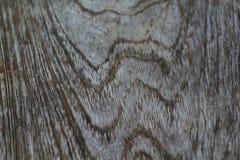 Изображения старой древесины, естественные цвета для предпосылки Стоковая Фотография RF