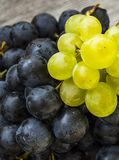 Изображения черных виноградин на деревянных изображениях в плите, больших черных виноградинах пола, черных и зеленых виноградин Стоковые Фотографии RF