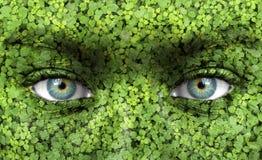 изображения экологичности принципиальной схемы еще многие мое портфолио стоковая фотография rf