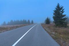 Изогнутая дорога асфальта в лесе горы на туманной погоде стоковая фотография rf