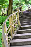 изогнутая лестница Стоковое фото RF
