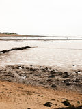 Изогнутые камешки морской водоросли пляжа groyne трубы сцены взморья Стоковые Фото