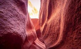 Изогнутые образования песчаника на каньоне антилопы стоковое изображение rf