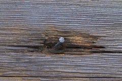 Изогнутый ноготь в деревянную стену Стоковая Фотография RF