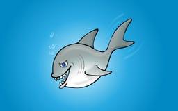 изолированная акула Стоковая Фотография