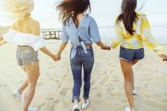 изолированная белизна вид сзади Группа в составе молодые привлекательные женщины держа руки бежать к воде Стоковая Фотография RF