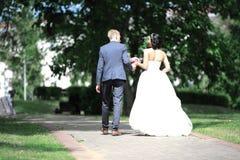 изолированная белизна вид сзади счастливая прогулка пар через парк Стоковое Фото