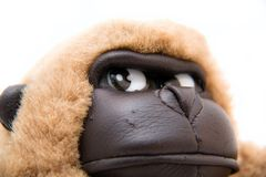 изолированная белизна игрушки обезьяны Стоковые Изображения RF