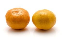 изолированная белизна tangerine Стоковые Фото