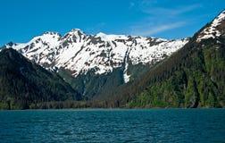 Изолированная бухточка в Аляске стоковая фотография