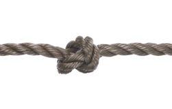 изолированная веревочка узла Стоковое Изображение