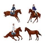 Изолированная женщина, установленные верховые лошади девушки, Семьи конноспортивного спорта тренировки езда верхом Стоковое Фото