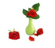 изолированная зеленым цветом белизна вазы красного цвета розовая Стоковое Изображение