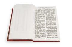 изолированная книга библии Стоковые Изображения RF