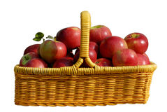 изолированная корзина яблок Стоковые Изображения