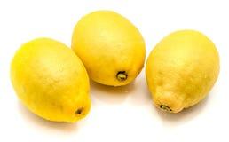 изолированная плодоовощ белизна лимона Стоковые Фото