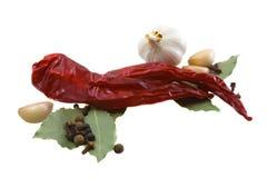 изолированная предпосылка spices различная белизна Стоковое Изображение