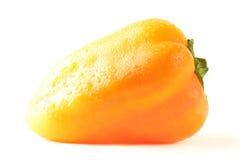 изолированная предпосылкой белизна перца Стоковое Фото