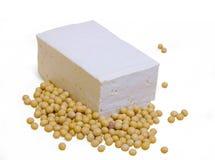 изолированная предпосылкой белизна tofu сои Стоковые Фотографии RF
