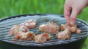 изолированная решетка барбекю Стейки цыпленка приготовления на гриле сток-видео