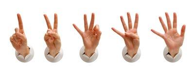 изолированная рука собрания Стоковое Фото