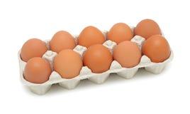 изолированная свежая коричневых яичек Стоковое Фото