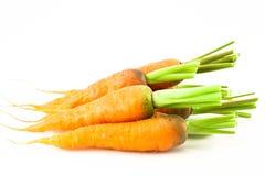 изолированная свежая моркови Стоковое фото RF
