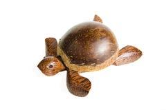 изолированная черепаха стоковые изображения rf