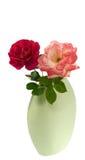 изолированная cerise розовая красная ваза весны роз Стоковые Фотографии RF