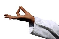 изолированное Дзэн знака Стоковые Фотографии RF