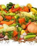 изолированное изображение много зрелых овощей, трав и конца-вверх специй стоковое фото rf