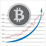 Изолированное секретное bitcoin монетки - цифровая валюта План-график Bitcoin Стоковые Фотографии RF