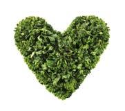 Изолированное сердце листовой капусты Стоковые Изображения