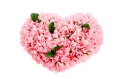 изолированное сердце сделало розами белизну Стоковая Фотография RF