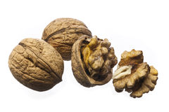 изолированные грецкие орехи белые Стоковые Фото