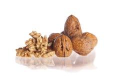 Изолированные грецкие орехи стоковые фото