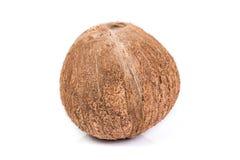 Изолированные кокосы Стоковая Фотография RF