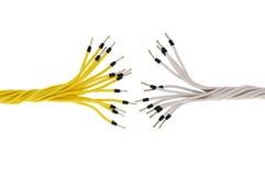 изолированные проводы Стоковая Фотография RF