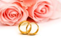 изолированные розы кольца wedding Стоковые Фото