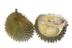 изолированные durians Стоковые Фотографии RF
