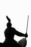 изолированный всадник рыцаря Стоковая Фотография