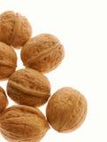 изолированный грецкий орех Стоковые Фото